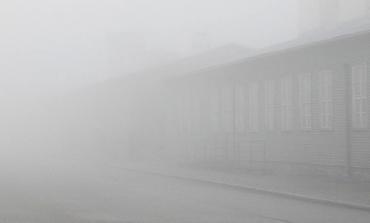 Grita en silencio / Memoria que se borra: Vida Yovanovich nos lleva en un viaje a través de la angustia