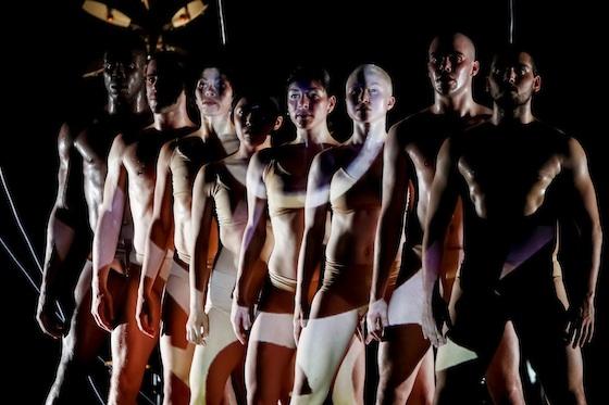 ¿Robots que bailan? Muy pronto en el @cervantino