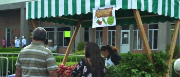 ¡Cambia tu basura por alimentos y plantas! Visita el Mercado de Trueque