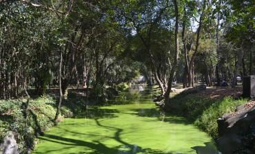 El Antiguo Colegio de San Ildefonso y el Bosque de Chapultepec, bajo la mira de World Monument Fund