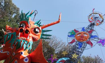 ¡Temporada de Carnaval en el Museo @DoloresOlmedo!