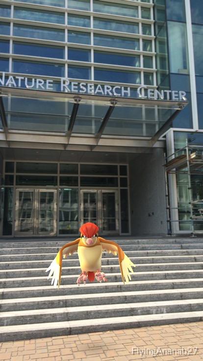 ¡Vamos a un museo! ¿…a atrapar Pokemones?