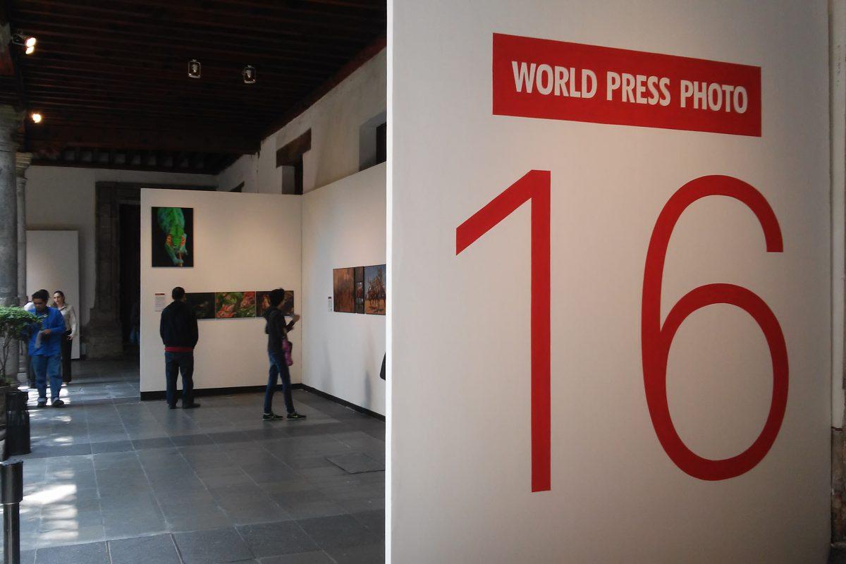 World Press Photo muestra lo mejor y lo peor del mundo